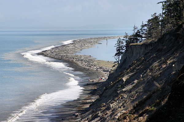 Spit Shoreline in Sequim